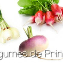 légumes-de-Printemps