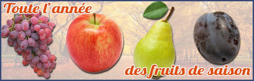 Toute l'année des fruits de saison automne
