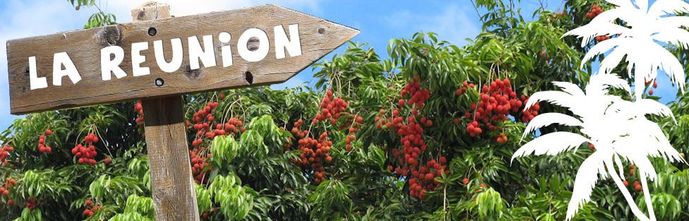 Litchis par avion de la Réunion