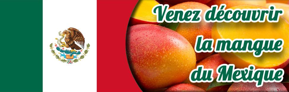 Mangues Kent du Mexique