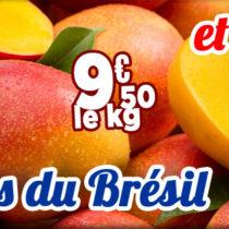 mangue-bresil-esp