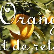 orange-port-esp