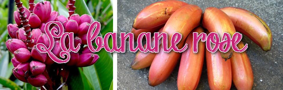 La banane rose de Martinique