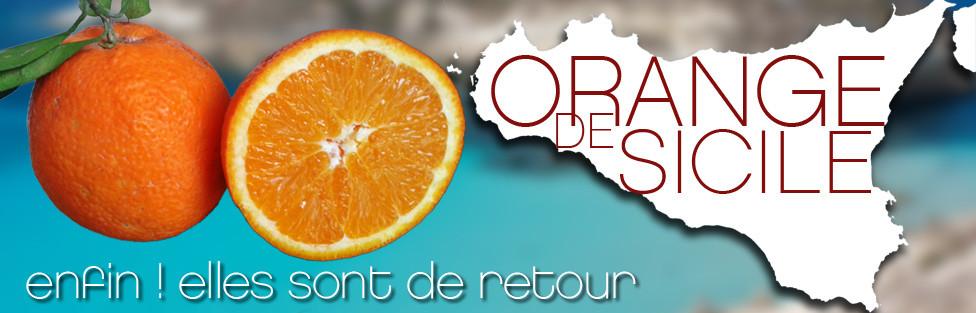 Les oranges de Sicile sont de retour !