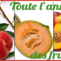 Fruits-mai