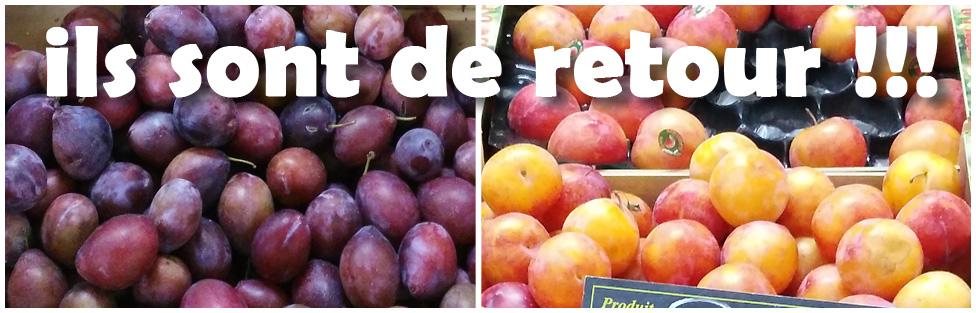 Prune d'Ente et prune-abricot