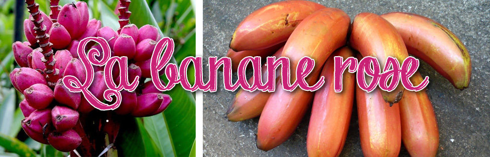 La banane rose